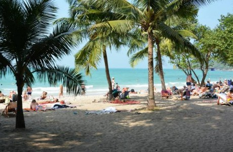 Under the shade of palm trees at Jomtien beach